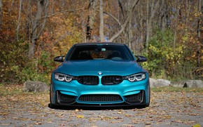 Picture BMW, Autumn, Face, F80, Sight