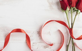 Picture red, Rose, Bud, tape