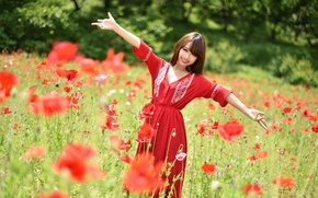 Picture field, summer, look, smile, Mac, dress, Asian