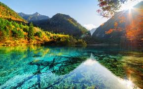 Picture autumn, forest, the sky, the sun, trees, mountains, lake, rocks, China, reserve, Jiuzhaigou, Jiuzhaigou