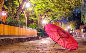 Picture lights, Nature, umbrella, Park, Alley