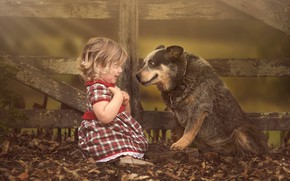 Picture foliage, the fence, surprise, dog, girl, friends, baby