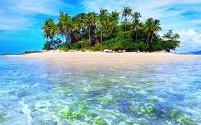 Picture tropics, palm trees, the ocean, island, exotic