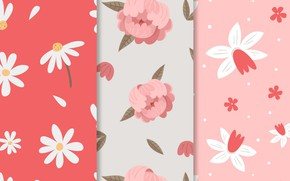 Picture flowers, chamomile, texture, pink, patterns, peonies, spring