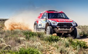Picture Auto, Mini, Dust, Sport, Machine, Speed, Race, Skid, Rally, SUV, Rally, 206, X-Raid Team, MINI …