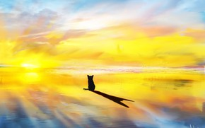 Picture sea, cat, the sun's rays