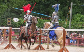 Picture armor, horse, knights, tournament