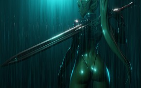 Wallpaper ass, rain, back, sword, fantasy, profile, elf, ears, the shower, weapons
