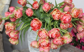 Picture Spring, Tulips, Vase