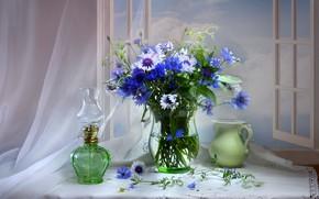 Picture bouquet, window, pitcher, cornflowers