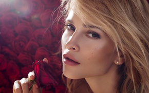 Picture Burgundy, girl, beautiful, rose, makeup, hairstyle, flower, closeup, face, blonde, background, keeps, light, look