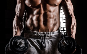 Picture torso, muscle, muscle, man, press, pose, dumbbells, gym, bodybuilder, abs, dumbbells, bodybuilder, barbell, gym