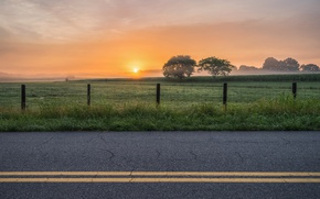 Picture road, field, sunset, fog