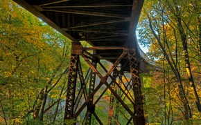 Picture autumn, forest, leaves, trees, bridge, USA, the state of new York, Rosendal, railway overpass