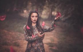 Picture look, girl, butterfly, background, mood, hands, dress, origami, bokeh, Pilar Roca Garcia
