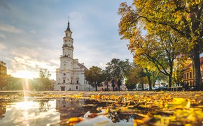 Picture Lithuania, Kaunas, Autumn Colors, Town Hall