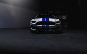 Picture Mustang, Ford, Shelby, Blue, White