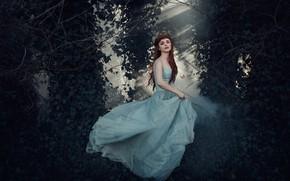 Picture forest, girl, butterfly, dress, Princess, Bird Man