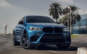 Picture BMW, Light, Sky, Blue, X6M, UAE, LED, F86
