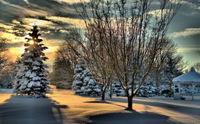 Wallpaper tree, gazebo, snow, shadow, winter, the sun, trees