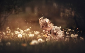 Picture summer, grass, flowers, nature, girl, dandelions, child