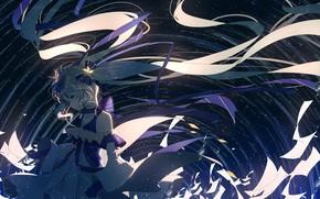 Picture girl, hair, anime, art, vocaloid, hatsune miku, yuki miku