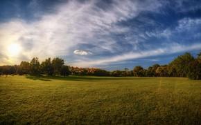 Picture field, the sky, grass, the sun, clouds, trees, Belarus, Minsk, Minsk, Loshitsa Park, Loshitski park