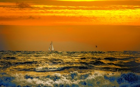 Picture sea, wave, clouds, bird, boat, glow, sail
