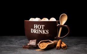 Picture coffee, chocolate, drink, cinnamon, cocoa