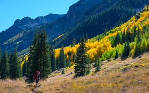 Picture autumn, forest, the sky, grass, girl, the sun, trees, mountains, rocks, slope, USA, tourism, backpack, ...