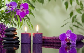 Wallpaper candles, Spa stones, orchids, flowers