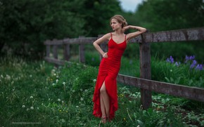 Picture greens, grass, trees, flowers, nature, sexy, model, the fence, makeup, figure, dress, tattoo, hairstyle, beauty, …