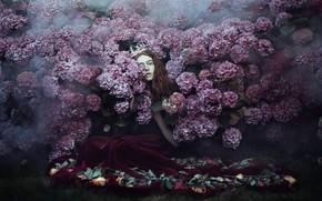 Picture girl, Princess, hydrangea, Bella Kotak, A little lost, a little found
