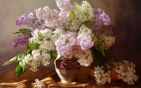 Picture summer, bouquet, still life, lilac, composition