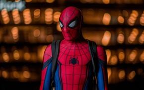 Wallpaper background, costume, spider-man