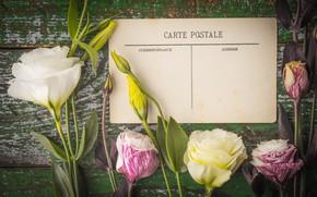 Picture flowers, bouquet, postcard, eustoma