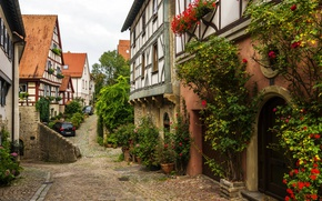 Picture trees, flowers, machine, home, Germany, the bushes, street, Wimpfen