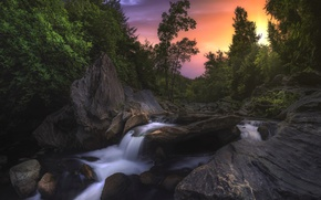Picture trees, sunset, river, stones, France, France, Corsica, Corsica, River Fium Alto