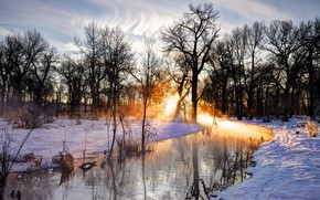 Wallpaper The sun, Nature, Reflection, Trees, River, Snow, Branches, Footprints in the Snow
