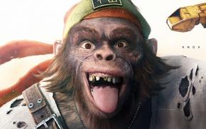 Picture Ubisoft, Game, Beyond Good & Evil 2