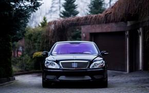 Picture Mercedes, Classic, Front, Black, Legend, S500, W220