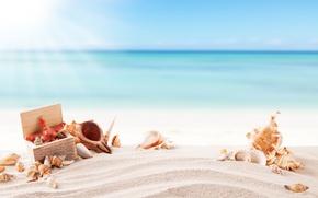 Wallpaper the sun, summer, starfish, summer, vacation, sand, sea, sand, shell, beach, seashells, beach, vacation