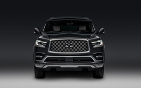 Picture Infinity, front view, 2018, Limited, QX80