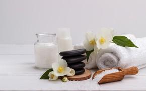 Picture flowers, stones, towel, Spa, Jasmine, sea salt