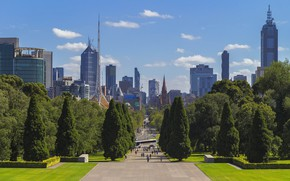 Picture trees, the city, Australia, Melbourne