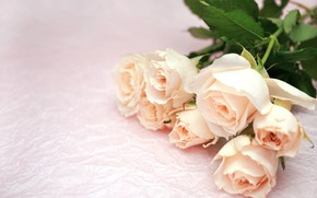 Picture flowers, bouquet, Roses