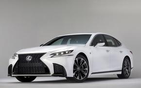 Picture car, Lexus, logo, Lexus LS 500 F Sport