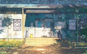 Picture vegetation, Board, structure, Everlasting Summer, Summer camp