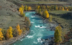 Picture river, Altay, Sensing