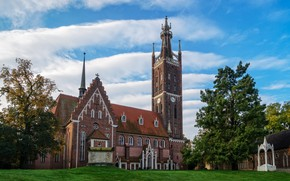 Picture the sky, grass, clouds, trees, lawn, Germany, Church, Worlitz, St. Petri Church